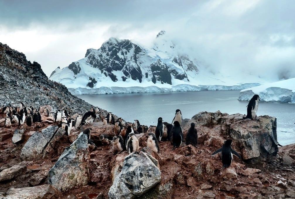 antarctica mountain