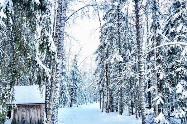 Ranua Finland