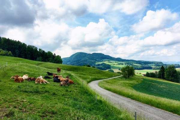 Baselland Switzerland