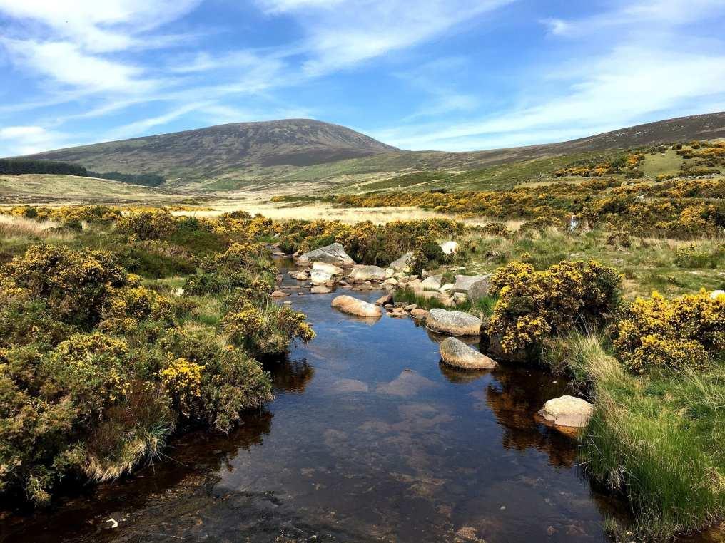 Wicklow Mountain National Park Ireland