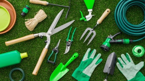 Live Lawn and Prosper: How to Get Your Property's Grass Looking Great Again