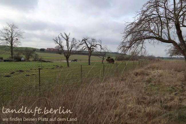 Blick über die Uckermärkische Landschaft