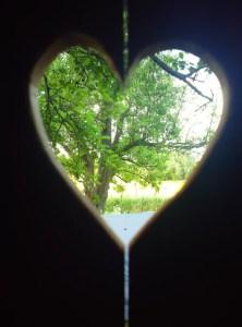 Herzsicht