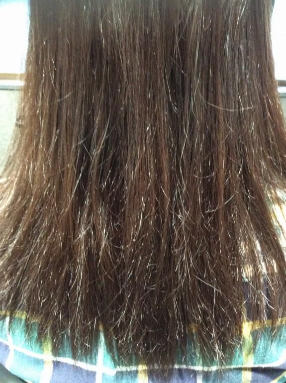 毛先部分がバサバサになった縮毛矯正ビフォーの画像です。5ヶ月前に縮毛矯正をかけたので新生毛が5センチ伸びています。根元部分はそんなに傷んではいません。