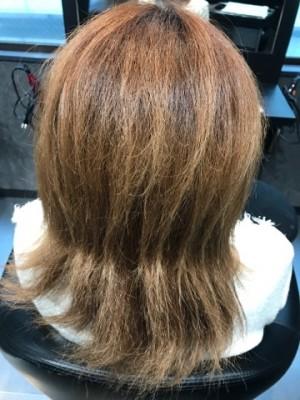 縮毛矯正の施術前の写真です。女性の後ろから写真を撮りました。縛っていたので中間部に縛った跡がついている。髪の毛はブリーチ毛です。けさきは白くなっています。ヘアーアイロンをかけているのにまるで艶が有りません。マネキン人形の髪の毛よりひどい状態ですね。