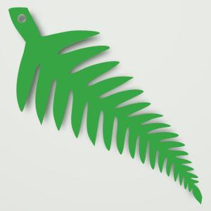 fern01