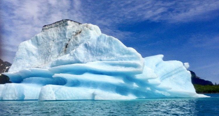 We paddled nearby this bona fide iceberg.