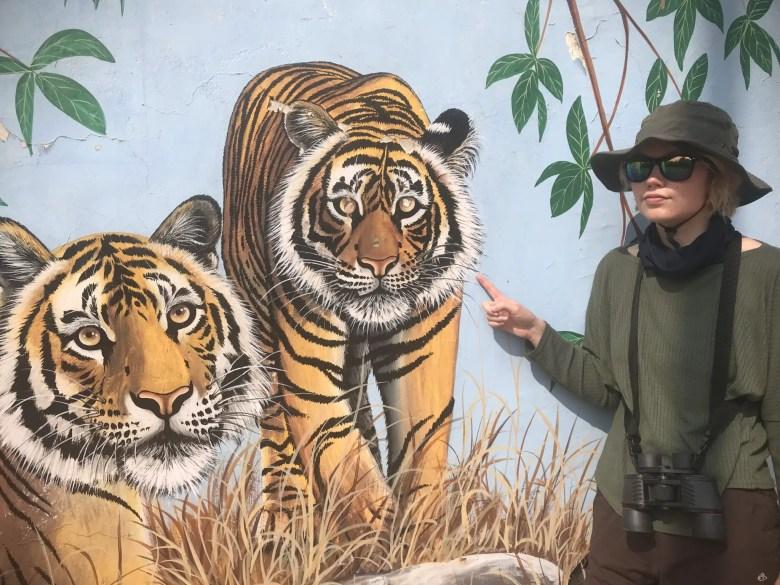Tiger mural, Ranthambore National Park, India