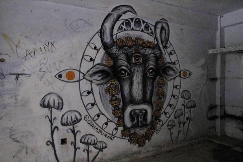 Cow graffiti in the flats, The Beatles Ashram, Rishikesh