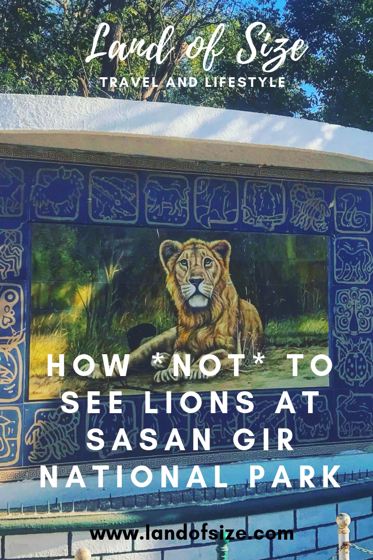 How not to see Asiatic lions at Sasan Gir National Park in Gujarat