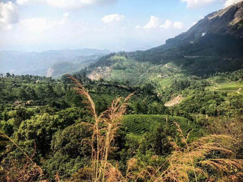 Viewpoint in Munnar, Kerala, South India