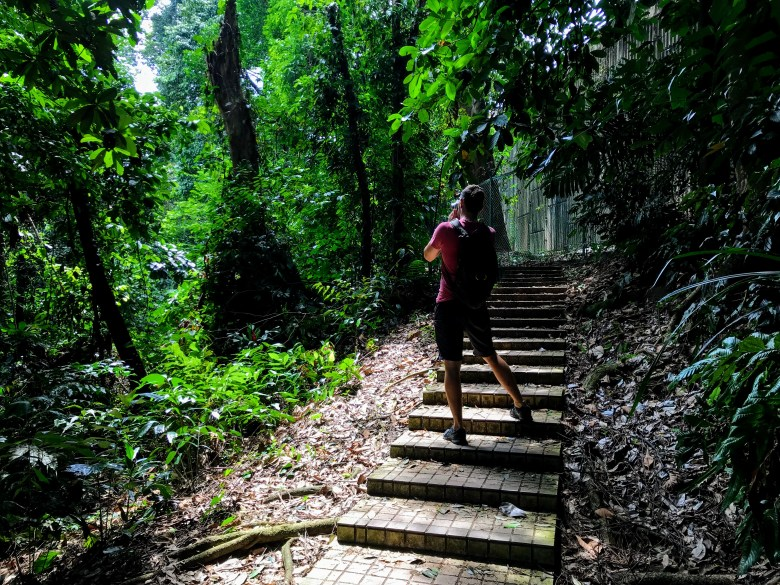 KL Forest Eco Park trail, Malaysia
