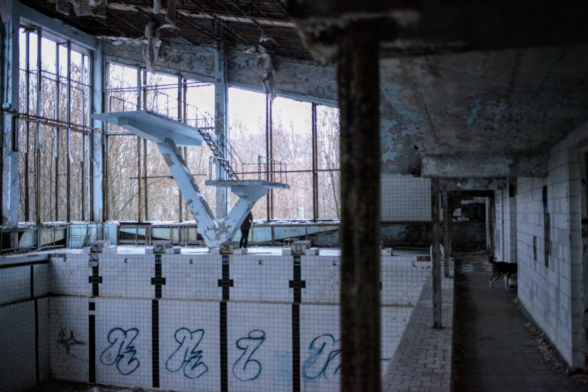 Pripyat's abandoned swimming pool