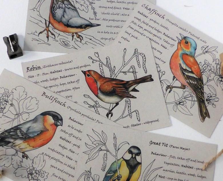 Garden bird postcards, Etsy