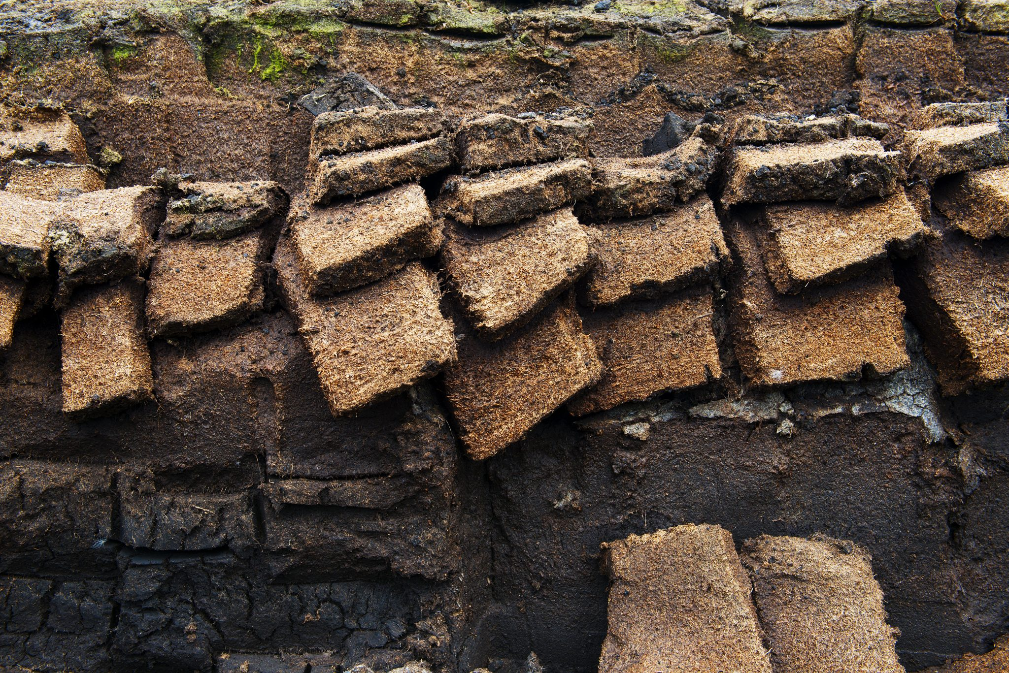 Harvesting peat