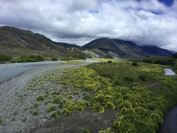 Center Of Zealand & Nelson Land Long White Cloud