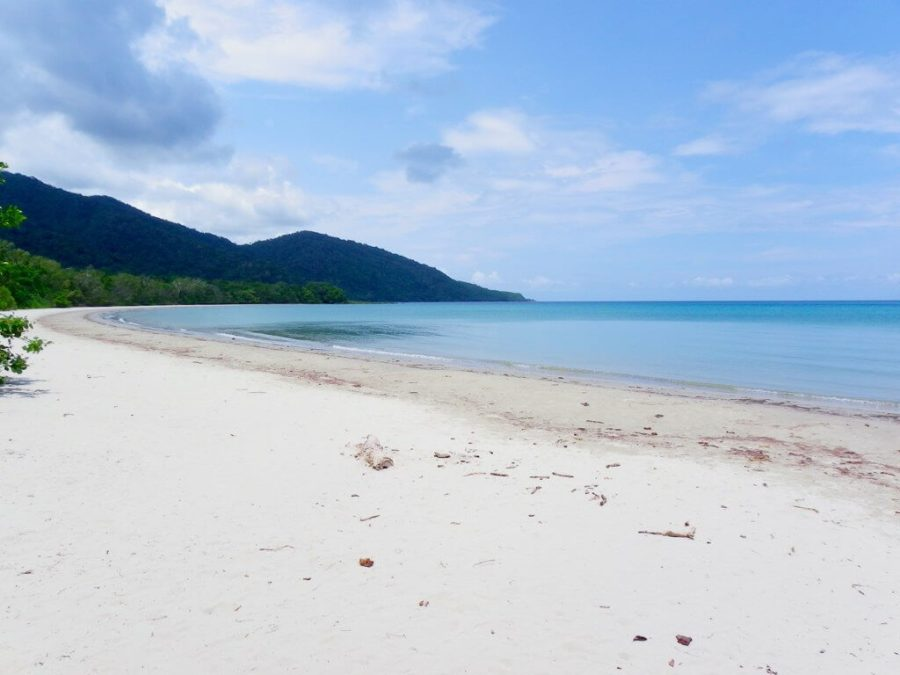 An image of a beach in Cape Tribulation. A place where the rain forest meets the ocean next to the barrier reef