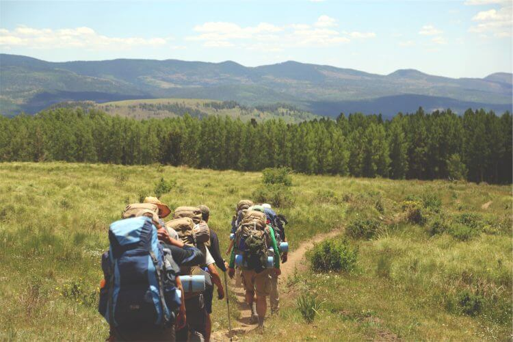A group of hikers carrying their backpacking gear and heading towards a forest
