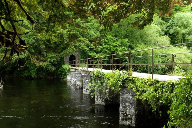 The Galway river near Cong is pictured here
