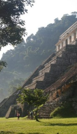 A pyramid in Palenque is seen bathing in glorious sunlight