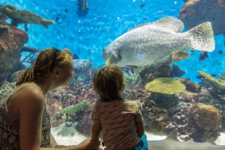 A mom with her kid at Kagoshima city aquarium