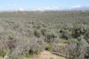 Land Elko Nevada