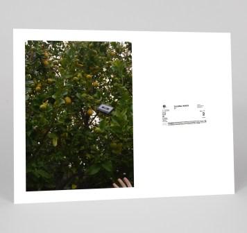 love-for-sale-nicole-lavelle-24x18