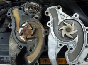 Dex cool leak around the timing chain cover  Land Rover Forums  Land Rover Enthusiast Forum