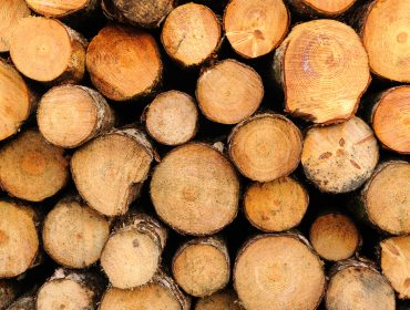 Podcast -- mass timber: a climate-positive investment