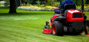 lawn care services flower mound, flower mound lawn care service