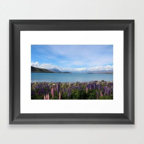 lake-tekapo-flower-field-framed-prints