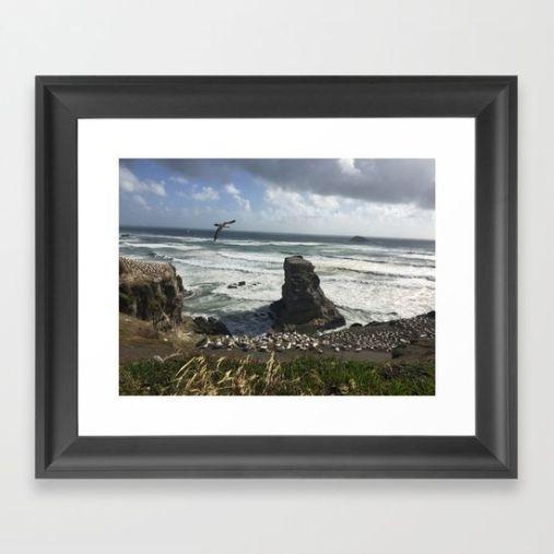 muriwai-beach-framed-prints