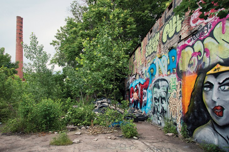 Graffiti might remain in parts of the park, as it could be considered part of the cultural landscape.