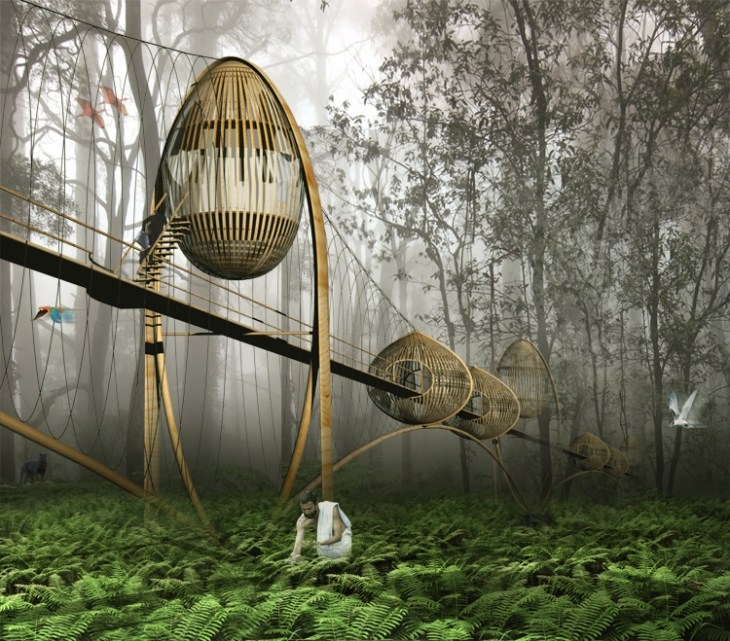 Thrive Or Survive Landscape Architecture Magazine