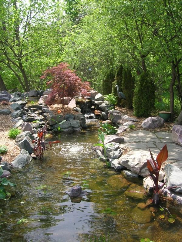 koi pond in se michigan landscape