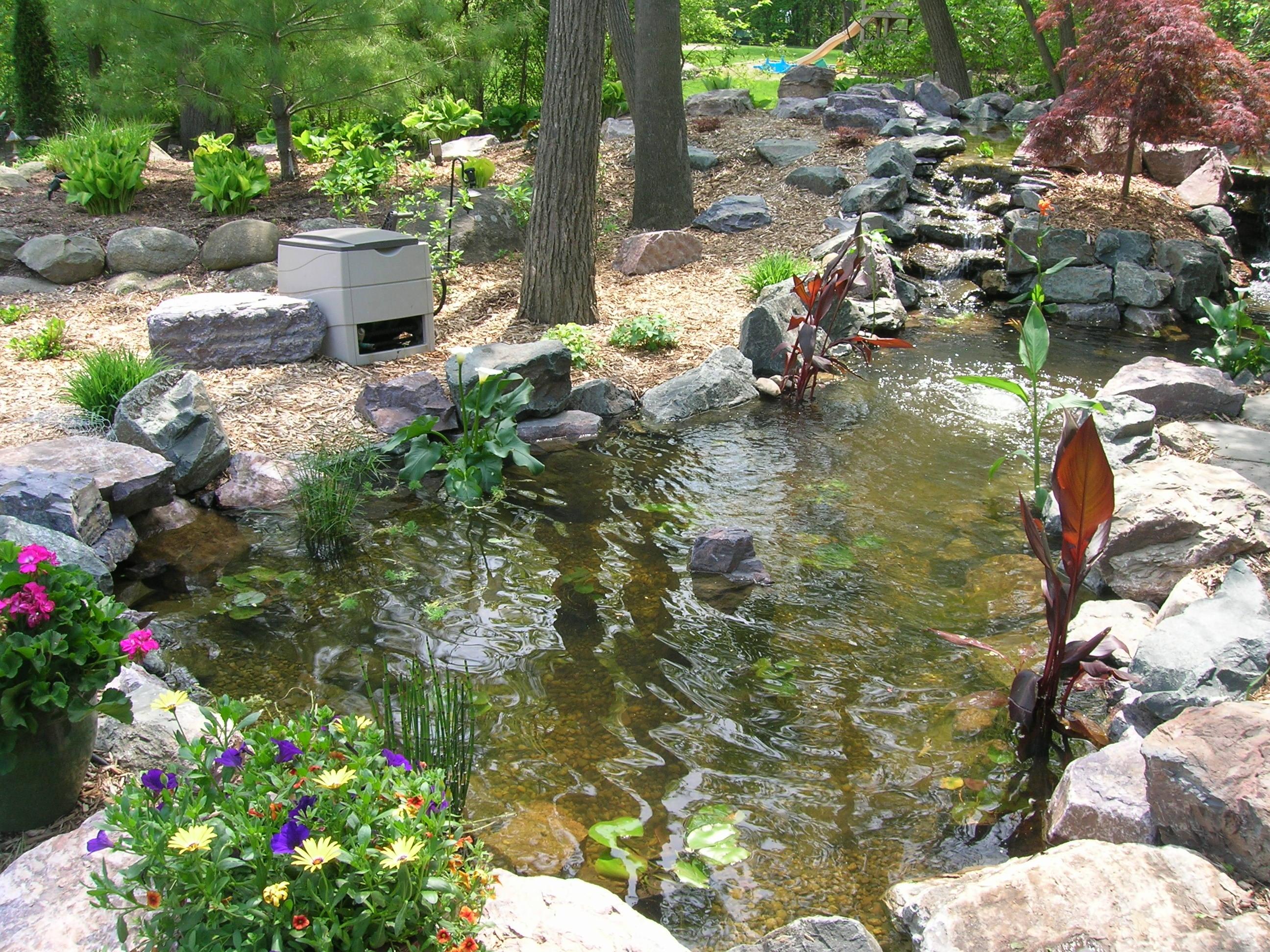 Koi Pond in SE Michigan  Landscape Artisan