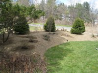 Naturalistic privacy berm Delmar, NY - Landscaping and ...