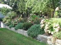 Landscaping Design Ideas For Backyard