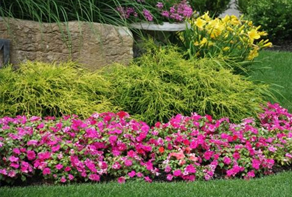 Flower Garden Bed Ideas 2016 Photos Gardening Design