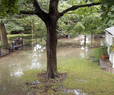 flooded backyard with water covering majority of grass