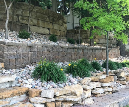yellow stella d'oro lilies surrounded by stone
