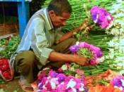 Kolkata flower market9