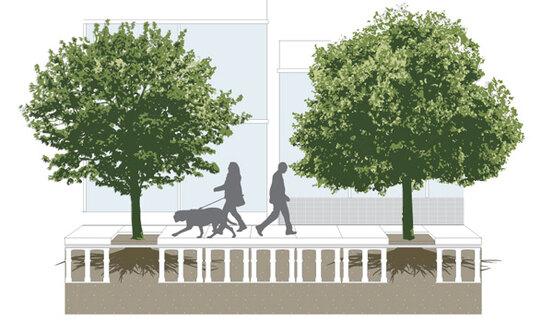Best Garden Design Plans