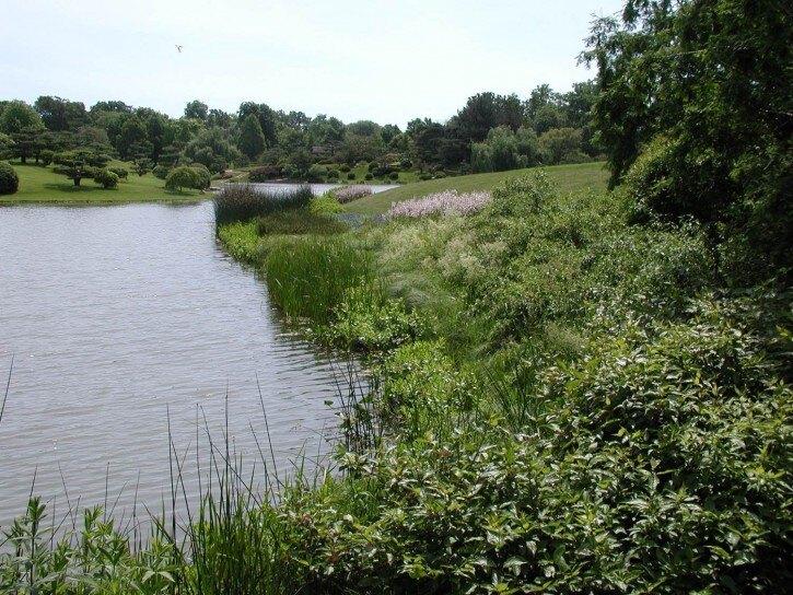 chicago botanic garden lake shoreline