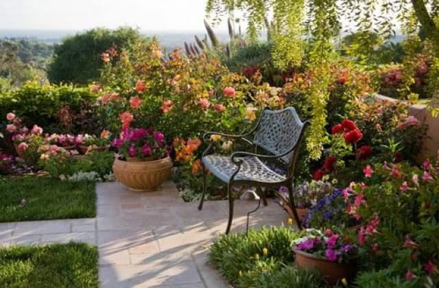 Scent Gardens, Scent Gardens, Landscape Pros | Landscape Design & Landscaping Services Manassas, VA