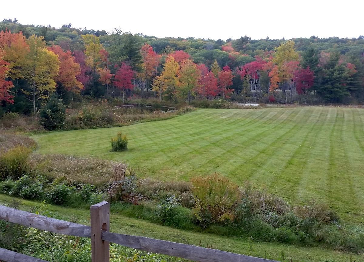 Landscaping Maintenence in New Hartford