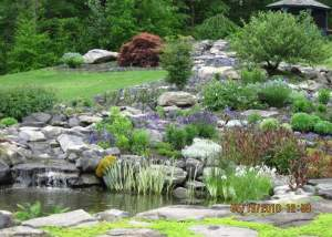Waterfall and Pond in Canton