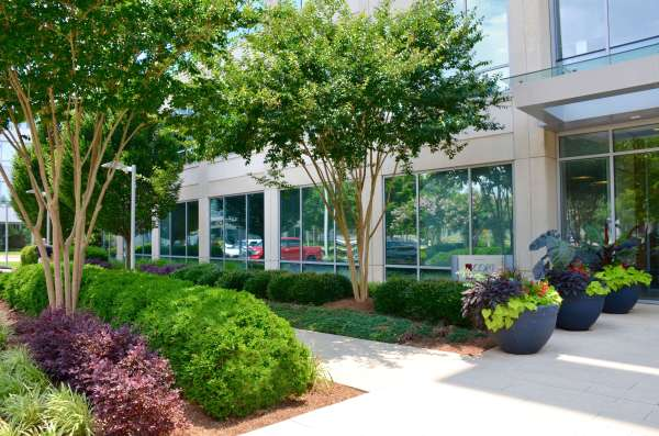 4 ways landscaping affect