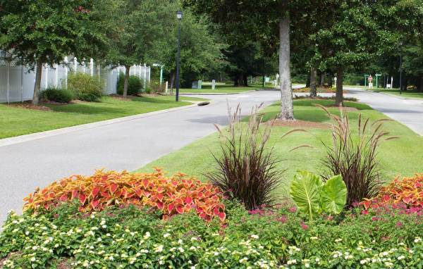 landscape maintenance design