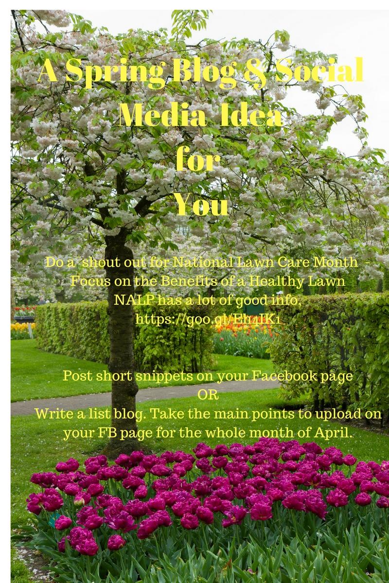 Spring blog #1